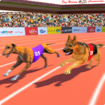 Dog Race Sim 2019 Dog Racing Games 7.1.4 MOD APK